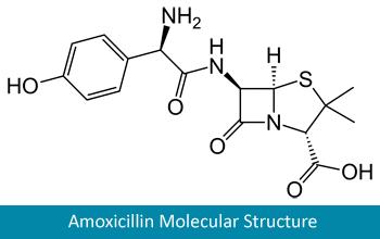 Amoxicillin molecular structure